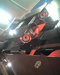 Corvette Cat - Destin, FL-z044_11.jpg