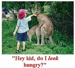 OT:Funny pic-pic12623.jpg