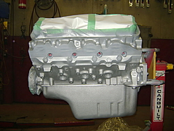 Custom Painted Motors....lets see what ya got-dsc00322.jpg