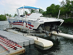 "What happened to the ""None of your business"" Aronow cat that used to be in Key West?-39.jpg"
