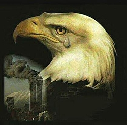Patriotic pictures-silent-tear.jpg