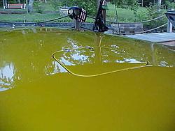 Pics of Yellow boats-mvc-005s.jpg
