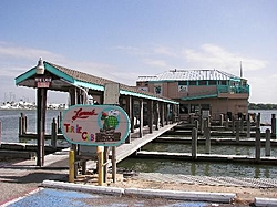 Coolest bar been to by boat-turtle2.jpg