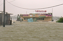 Coolest bar been to by boat-turtle-club-after2.jpg