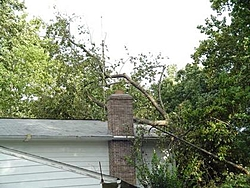 Hurricane Isabel....   The Morning After-h8.jpg