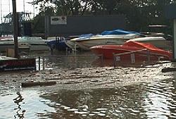 Storm aftermath - Maryland-im000585.jpg