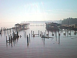 Hurricane Isabel....   The Morning After-mvc-016f.jpg