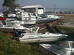 Hurricane Isabel....   The Morning After-mvc-004f.jpg