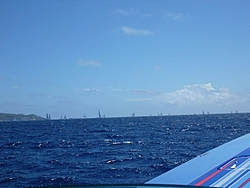 The Continuation of Bobthebuilder's Caribbean Adventure - Feb to May 2011-ant-5.jpg
