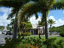 The Continuation of Bobthebuilder's Caribbean Adventure - Feb to May 2011-ant-11.jpg