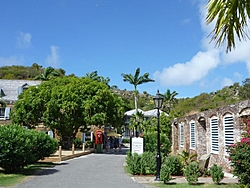 The Continuation of Bobthebuilder's Caribbean Adventure - Feb to May 2011-ant-12.jpg