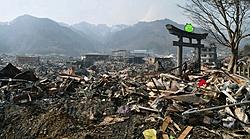 Another Japanese earthquake 7.4-angrybirdsjapan.jpg