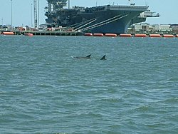 Jammin' on the James 2011, Part III: Another Winner in Virginia-aircraft-carrier-dolphin.jpg