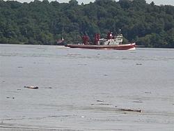 Hudson River Trashed-p8300074-medium-.jpg