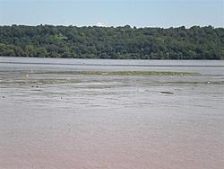 Hudson River Trashed-p8300079-medium-.jpg