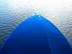 What would you do? Big Prehistoric Bird sheting on your Powerboat-bird-sheting-hustler-11-2011-006-large-.jpg