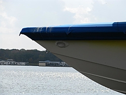 What would you do? Big Prehistoric Bird sheting on your Powerboat-bird-sheting-hustler-11-2011-013-large-.jpg