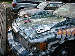 Now this guy likes his Hydro racing!-111511-042.jpg