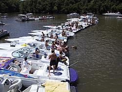 Loto Pics-oso-crowd-party-cove-2.jpg
