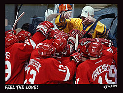 Well, since nobody else has said it, I will:  The WINGS ROCK!!!!!!!!-feel-love-1-.jpg