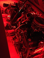 Engine Compartment Pics.  Lets see em.-red.jpg