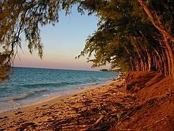 Pic' of last Bahama run, note I'm from Wi'-bimini-shores.jpg