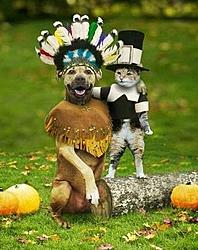 Happy Thanksgiving-happy-t-day.jpg