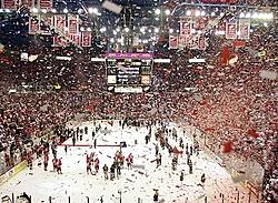 Wings Rule!!!!!!!!!-hockeytown.jpg