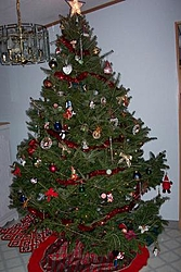 Who has XMas Lights Up.-small-tree.jpg