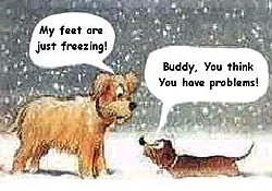 OT:  It's beginning to look a lot like Christmas...-freezing.jpg