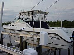 looking for info on boat lifts-dsc00347.jpg