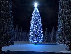 Merry Christmas Thread-bluexmas2k2.jpg