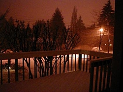 Snow or Blow?-new-years-snow.jpg