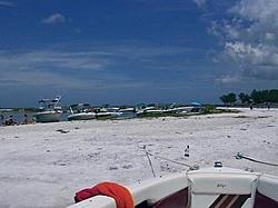 Sarasota area members-island.jpg