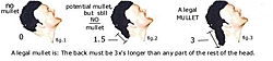 sure is slow.....WHAT'S YOUR FAVORITE NAME FOR MULLETS??-mulletdiagram.jpg