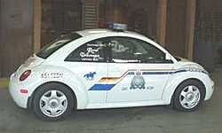There's a police car behind you on the road, what do you do??-pg-sp-vw-beetle-police.jpg