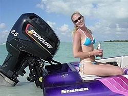 Hey All You Jerks In Florida !!!!-nest-key-john-042-small-.jpg