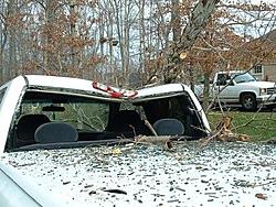OT: Insurance / Auto Body ?-2004_0104_130721aa.jpg