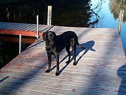 Man's Best Friend, Beside His Boat-dcp01629.jpg