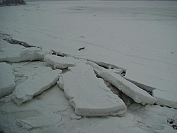 You think it was cold this day.-31.jpg