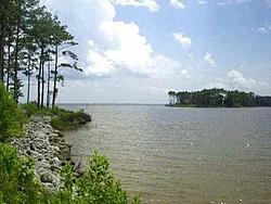 Southeastern Coastal Usa-ncproperty.jpg