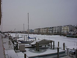 Friday PM WE of MIA Boat Show at Monty's-wildwood2.jpg