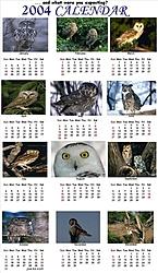 2004 Hooters Calendar-2004hooterscalendar.jpg