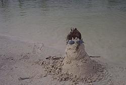 Keys Sandman-dcp_0726.jpg