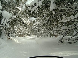Who wants to snowmobile-s2400075.jpg