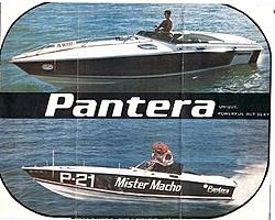 Think Racing Is Tough Now??-1-pantera-brochure-1975.jpg