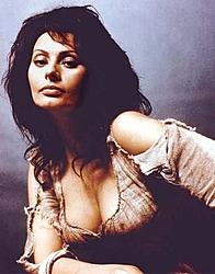 Hottest actress-sophia.jpg