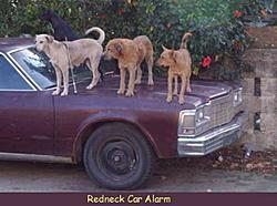 OT: Redneck Car Alarm-caralarm.jpg