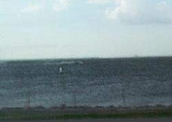 I survived a Tsunami-boat.jpg