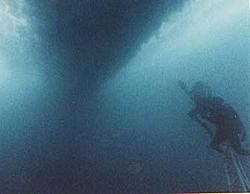 Arneson Surface Drives-divers.jpg